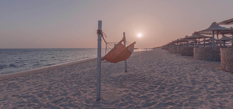Hammock on the beach next to beach umbrellas